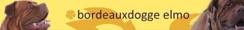 Hier erfahrt ihr alles über unsere Knutschkugel Elmo!!!     Mit vielen Infos zur Bordeauxdogge und vielen Links zu anderen BX-Seiten